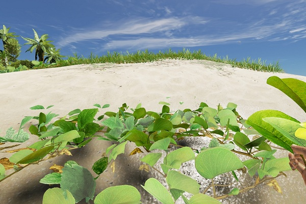 Stranded Deep poison cure