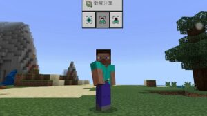 See yourself in minecraft