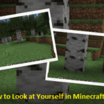 how to see yourself in mincraft