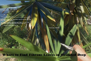 Where to Find Fibrous Leaves in Stranded Deep